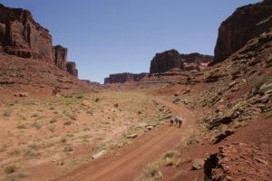 A team treks along a canyon road