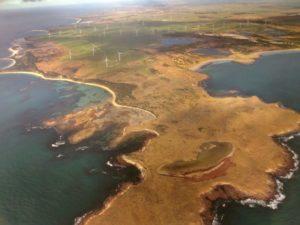 Aerial view of Woolnorth windfarm
